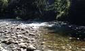 Chapman-Creek