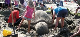 Sandcastles: Plan your build