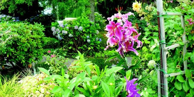 Seed-saving garden workshop offered