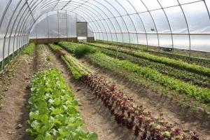 Agricultural Land Reserve input sought