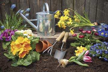 Would-be green thumbs welcome
