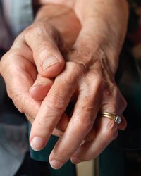 Elder abuse, by the numbers