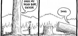 The Weekly cartoon