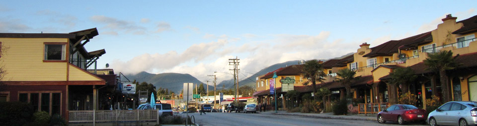 Sechelt's Business Improvement Association renewal plan debated