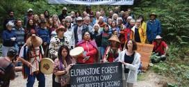 Forest lands should be park: ELF