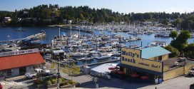 Rowe: Encouraging report on Gibsons harbour