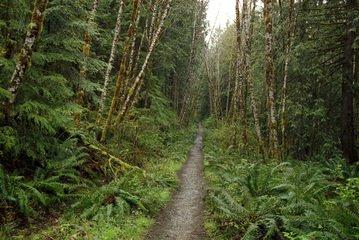 Hiking trail to Squamish hits roadblock