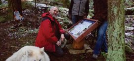 Interpretive sign installed on Trout Lake trail