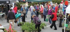 Gibsons Garden Club hosts annual plant sale